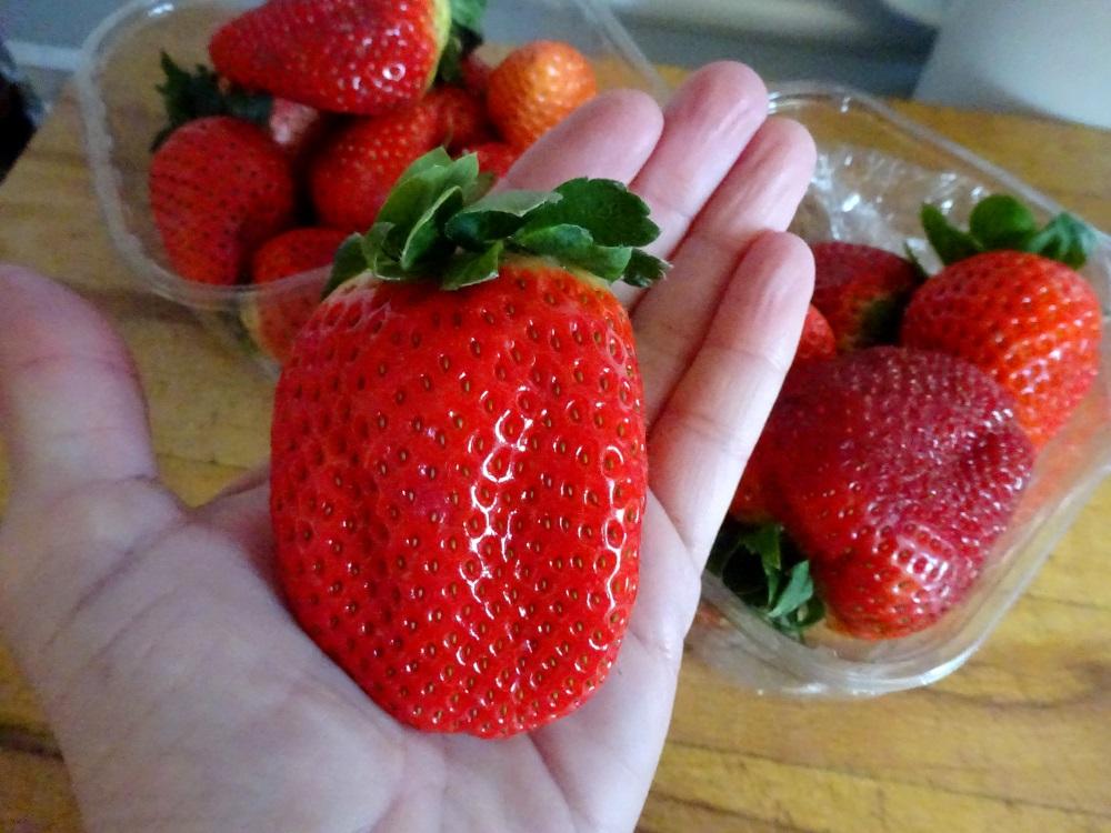 Monster-Erdbeeren