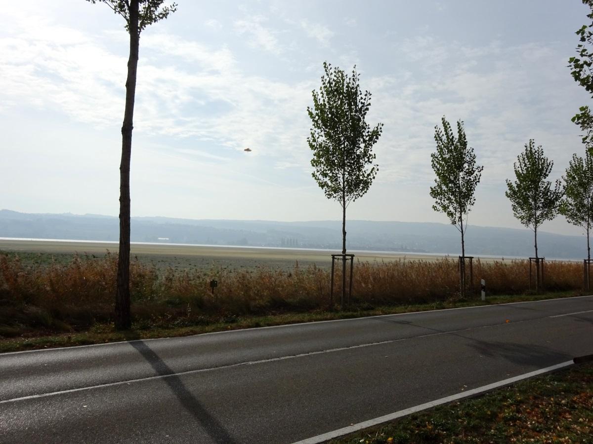 Niedrigwasser Inseldamm Reichenau